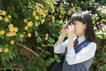 女子高生 写ルンです 使い捨てカメラ