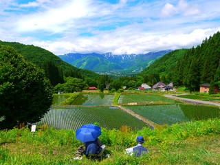 初夏 田植えも終わって。青鬼地区 白馬 長野 日本。6月中旬。