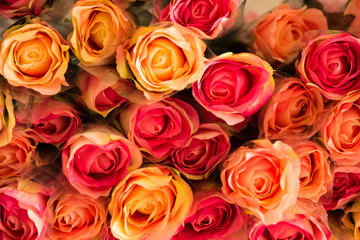 Background of mixed colorful roses plastic flower closeup.