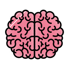 brain science mind intelligence mental design creative think vector illustration
