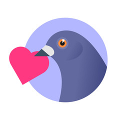 A post pigeon with an red heart in the beak. Flat vector illustration of a homing-pigeon carring heart shape sign.  Valentine day, postal, bird, dove mail concept isolated on white background.