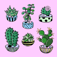 cartoon set of cactus, succulent and pots