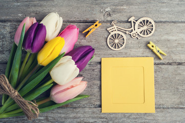 Colorful tulip flowers, yellow frame