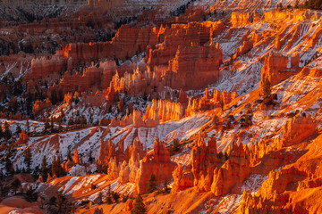 Poster Bordeaux Sunrise over Hoodoos in Bryce