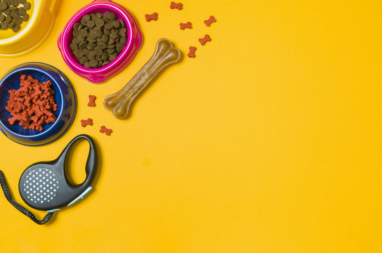 Dry dog food in bowl and pet accessories on yellow background top view. Pet feeding concept backgrounds with copy space. Frame composition.