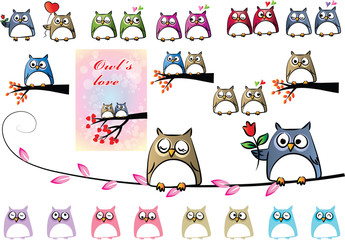 cartoon owl fall in love set