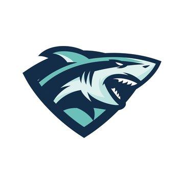 shark - vector logo/icon illustration mascot