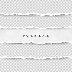 Set of torn paper stripes. Paper texture with damaged edge isolated on transparent background. Vector illustration