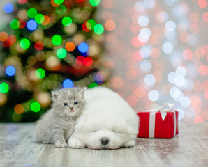 Baby kitten and samoyed puppy with gift box on a background of the Christmas tree