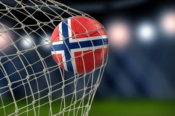 Norwegian soccerball in net