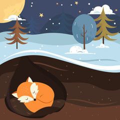Let it snow. Fox sleeping in the hole.