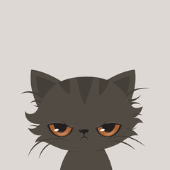 Angry cat cartoon. Cute grumpy cat, vector.