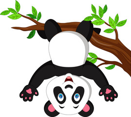 Cartoon panda hanging on tree branch