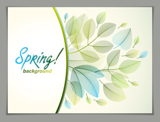 Design horizontal banner with Spring typing logo, green and fresh leaves frame composition background. Seasonal card, promotion offer. Stylish classy botanical drawing, environment.
