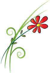 flower and plant background