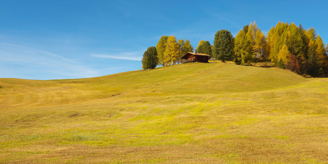 Autumnal landscape with a meadow, small hut and color trees