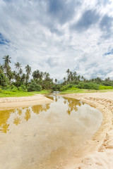 Balapitiya, Sri Lanka - A wild river leading towards the virgin forest of Balapitiya Beach