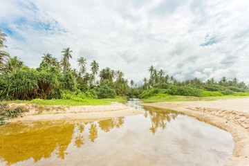 Balapitiya, Sri Lanka - A wild, small river leading towards the virgin forest of Balapitiya Beach