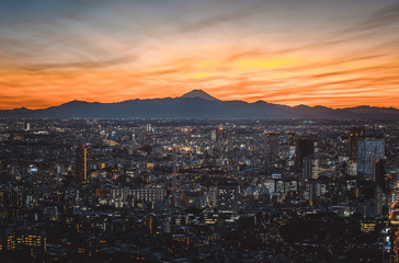 Tokyo skyline and buildings from above, view of the Tokyo prefecture with fuji mount in the background