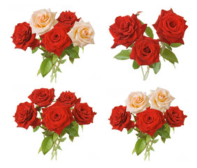 roses bunch isolated on white background