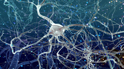 Inside of Brain