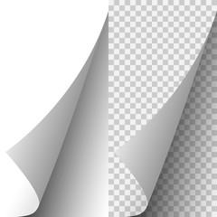 Vector white realistic paper page corner