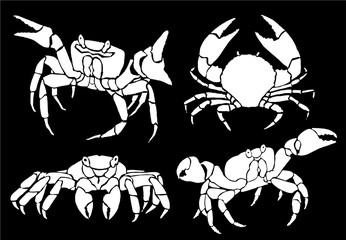 Graphical set of crabs isolated on black background,vector sea food illustration