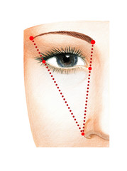 Fragment of a woman's face with open eyes. The scheme of constructing the ideal length of the eyebrow.