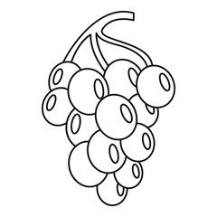 Grape for wine icon. Outline illustration of grape for wine vector icon for web
