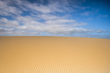 beautiful view of dune in the desert
