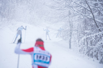 Professional Cross country skating in white winter forest. Original sport photo, winter game pyeongchang 2018