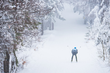Cross country skiing in white winter nature. Original sport photo, Pyeongchang, winter game Professional athlete
