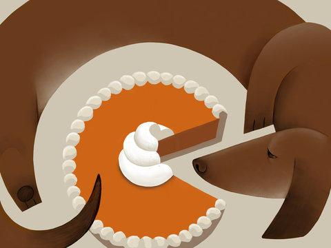 Dog with pie