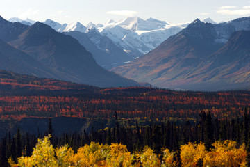 Fototapete - Denali Range Autumn Color Alaska Wilderness Winter Season