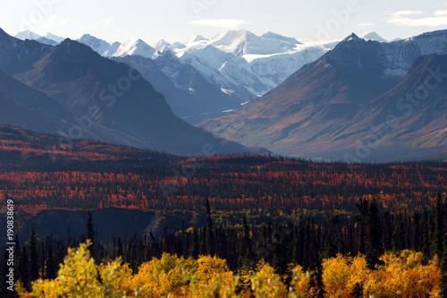 Wall mural Denali Range Autumn Color Alaska Wilderness Winter Season