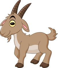 Cartoon goat isolated on white background