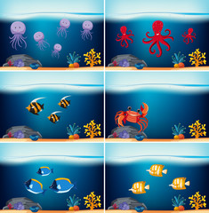 Six underwater scenes with different sea animals