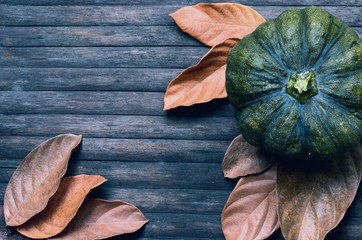 Green pumpkin and yellow leaves moody toned photo. Autumn harvest banner template.