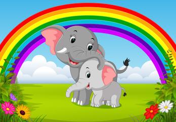elephant and baby elephant at jungle with rainbow scene