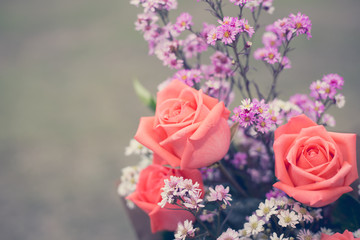 Beautiful flowers, closeup, vintage tone.