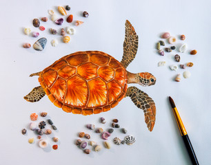 Sea turtle water color drawing on white paper with sea shells photo.