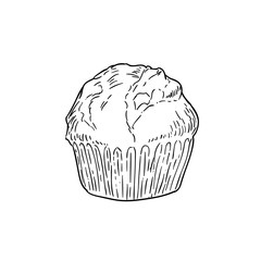 cupcake black-and-white sketch cartoon doodle. vector illustration