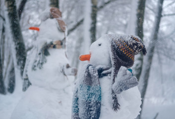 the funny snowman in the snowy forest
