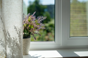 Image of window with a flower in a pot and curtain in the room.