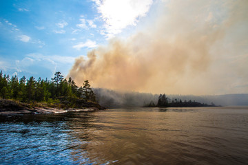 Fire in the forest. The trees are burning. Fire on a forest lake. The trees are burning on the island. Wild nature. Finland. Forest on the island. Fire in the wild.