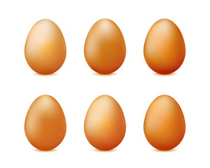 Realistic eggs set isolated on white background vector