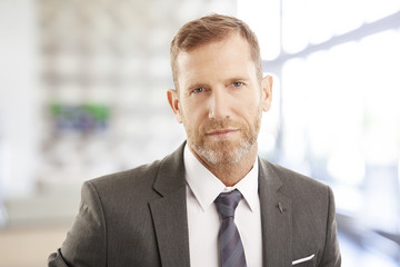 Successful businessman portrait. Middle aged financial director businessman sitting at office and looking at camera. Wearing elegant suit with tie.
