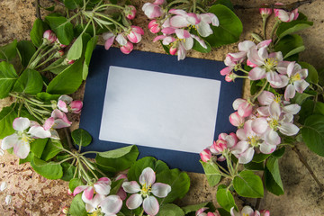 Photo frame with blossoming apple branches, copy space