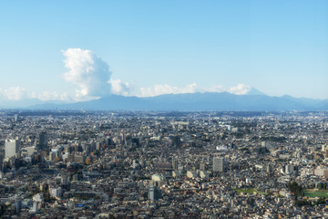 Tokyo with the mounting Fuji on the background. Japan.