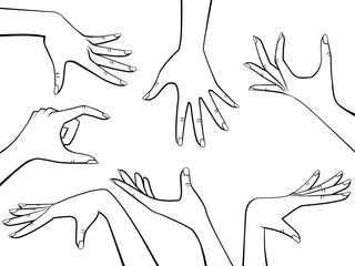 Vector Design Elements Set of Beautiful Woman Hands Black Outline Isolated on White